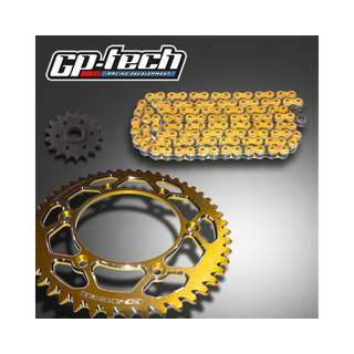 GP-TECH Kettenkit Suzuki gold  DID 520 VX2 X Ring