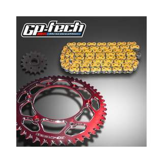 GP-TECH Kettenkit Kawasaki rot DID 520 VX2 X Ring
